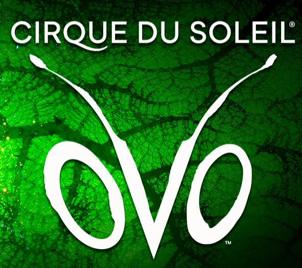 Post Thumbnail of Цирк Дю Солей, шоу OVO. Сбылась ли сказка? Отзыв.