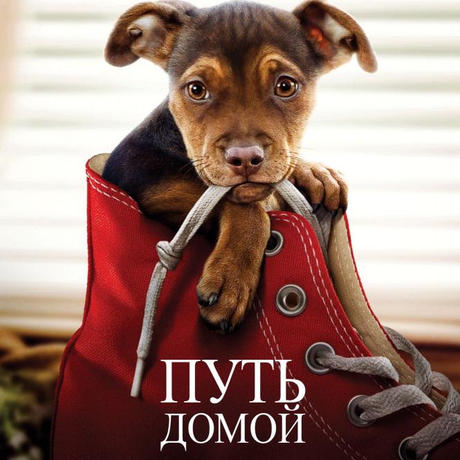 Post Thumbnail of Фильм Путь Домой - отзыв без спойлеров