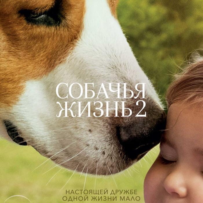 Post Thumbnail of Собачья Жизнь 2 - отзыв без спойлеров
