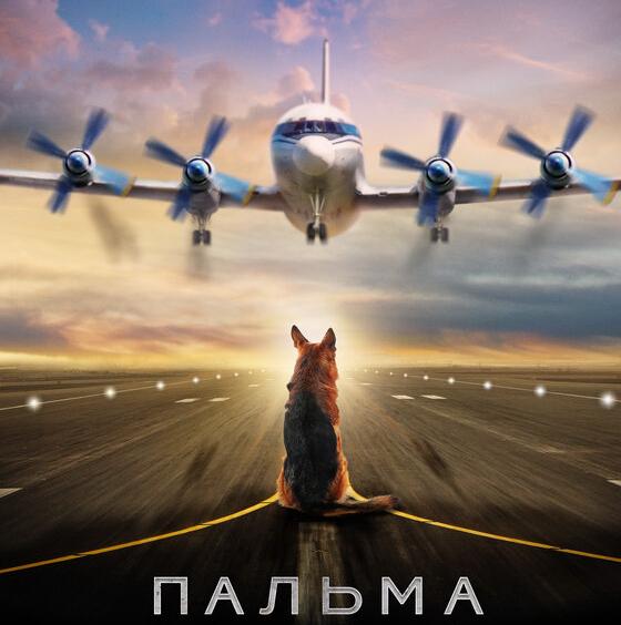 Post Thumbnail of Фильм Пальма - отзыв без спойлеров